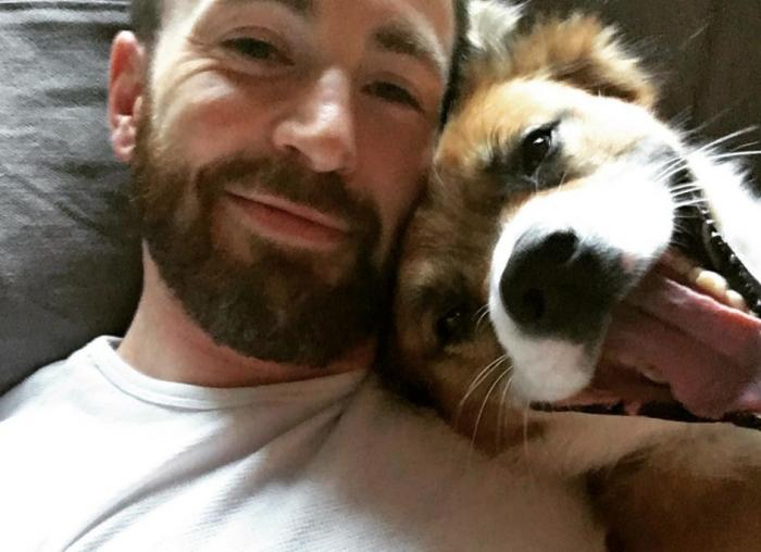 PopUps: Chris Evans Shares Adorable Dog Pic...Which Also Features His Chest Tattoo